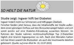 Ingwer hilft bei Diabetes